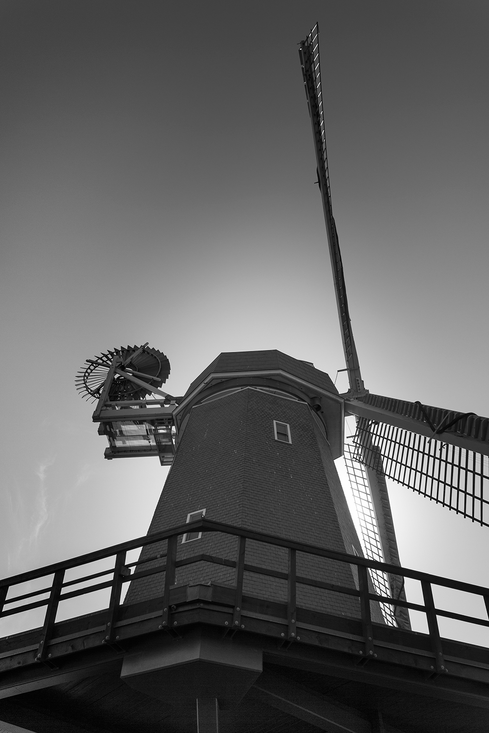 Windmill Black and White